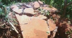 Duas pessoas morrem e duas ficam feridas na explosão de uma fossa em Bizarra.